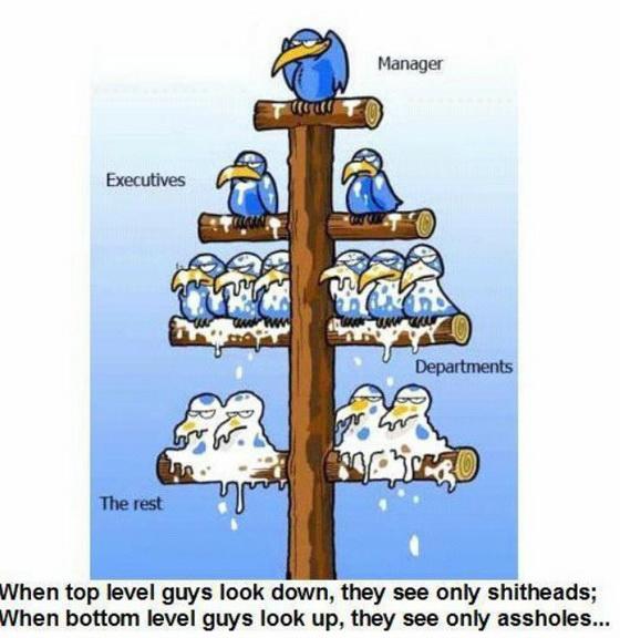 Многие представляют иерархию управления так