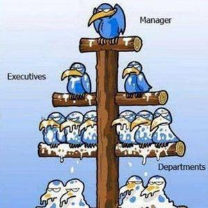 Иерархия управления